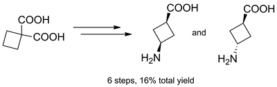Expedient Synthesis of cis- and trans-3-Aminocyclobutanecarboxylic Acids