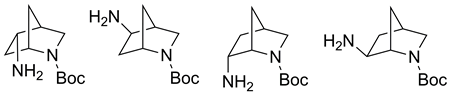 Improved Synthesis of Monoprotected 5- and 6-Amino-2-azanorbornanes