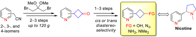 Robust and Scalable Approach to 1,3-Disubstituted Pyridylcyclobutanes