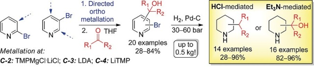 Scalable and Straightforward Synthesis of All Isomeric (Cyclo)alkylpiperidines