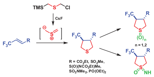 3-Functional substituted 4-trifluoromethyl tetrahydrothiophenes via [3 + 2]-cycloaddition reactions
