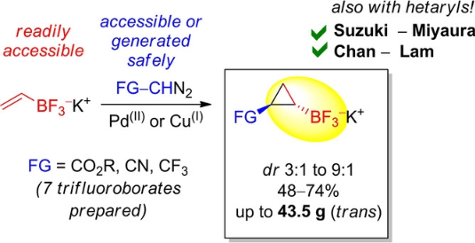 Multigram Synthesis and C−C/C−N Couplings of Functionalized 1,2‐Disubstituted Cyclopropyltrifluoroborates