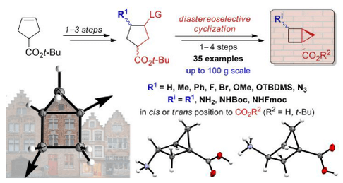 Building the Housane: Diastereoselective Synthesis and Characterization of Bicyclo[2.1.0]pentane Carboxylic Acids