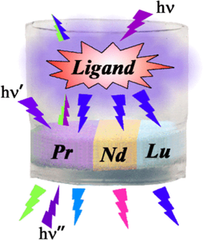 Absorption- and Excitation-Modulated Luminescence of Pr, Nd, and Lu Compounds with Dianions of Tetrafluoroterephthalic and Camphoric Acids