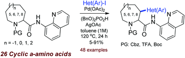 Pd-Catalyzed directed CH-(hetero)arylation of cyclic α-amino acids: effects of substituents and the ring size