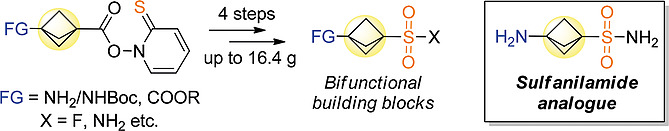 3‐Carboxy‐/3‐Aminobicyclo[1.1.1]pentane‐Derived Sulfonamides and Sulfonyl Fluorides – Advanced Bifunctional Reagents for Organic Synthesis and Drug Discovery