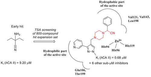 Further validation of strecker-type α-aminonitriles as a new class of potent human carbonic anhydrase II inhibitors: hit expansion within the public domain using differential scanning fluorimetry leads to chemotype refinement