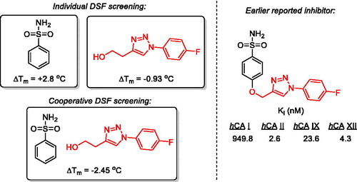 Screening of benzenesulfonamide in combination with chemically diverse fragments against carbonic anhydrase by differential scanning fluorimetry