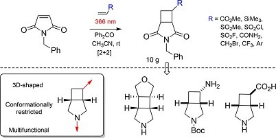 [2+2]-Photocycloaddition of N-Benzylmaleimide to Alkenes As an Approach to Functional 3-Azabicyclo[3.2.0]heptanes