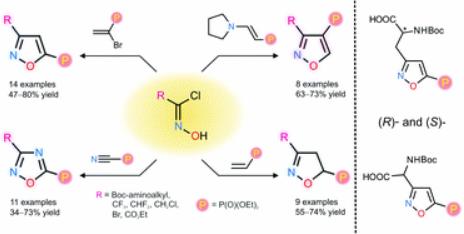 Regioselective synthesis of isoxazole and 1,2,4-oxadiazole-derived phosphonates via [3 + 2] cycloaddition