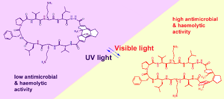 Controlling Biological Activity with Light: Diarylethene-Containing Cyclic Peptidomimetics