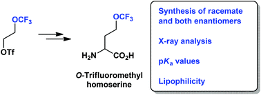 Synthesis and physical chemical properties of 2-amino-4-(trifluoromethoxy)butanoic acid - a CF3O-containing analogue of natural lipophilic amino acids