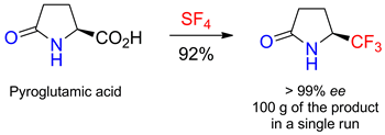 (5S)-5-(Trifluoromethyl)pyrrolidin-2-one as a Promising Building Block for Fluoroorganic Chemistry