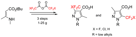 Multigram Synthesis of Fluoroalkyl-Substituted Pyrazole-4-carboxylic Acids