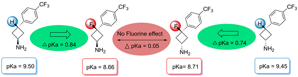 Synthesis and Physicochemical Properties of 3-Fluorocyclobutylamines