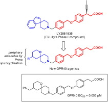 Free fatty acid receptor 1 (GPR40) agonists containing spirocyclic periphery inspired by LY2881835