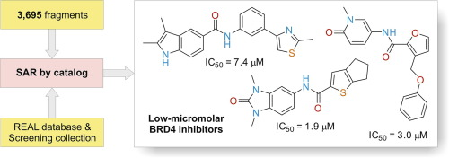 Straightforward hit identification approach in fragment-based discovery of bromodomain-containing protein 4 (BRD4) inhibitors