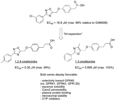 Phenoxymethyl 1,3-oxazoles and 1,2,4-oxadiazoles as potent and selective agonists of free fatty acid receptor 1 (GPR40)