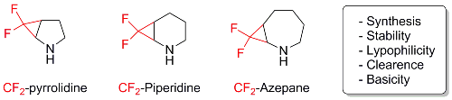 Synthesis and studies on gem-fluorinated 2-azabicyclo[n.1.0]alkanes