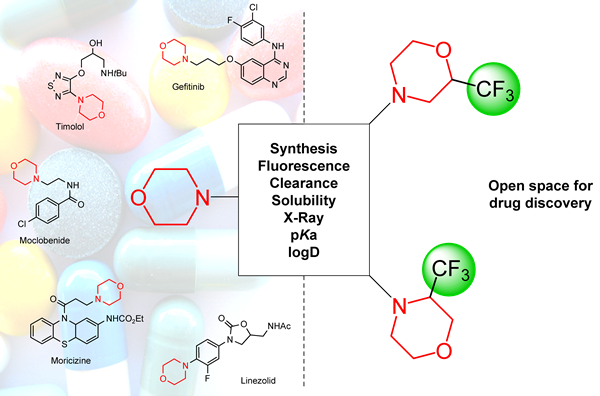 Synthesis of 2- and 3-trifluoromethylmorpholines: useful building blocks for drug discovery