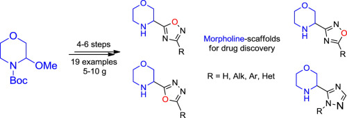 Synthesis of 3-oxadiazolyl/triazolyl morpholines: Novel scaffolds for drug discovery