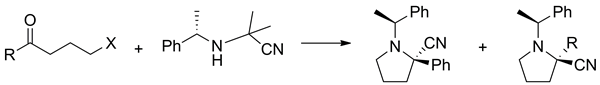 An approach to 2-cyanopyrrolidines bearing a chiral auxiliary