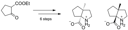 Synthesis of enantiopure (R,R)- and (S,S)-cis-2,3-propanoprolines
