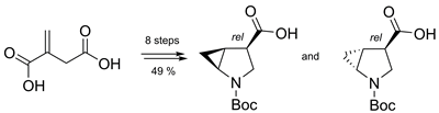 Synthesis of Boc-protected 4,5-methano-β-proline