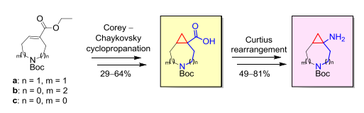 Synthesis of azabicyclo[n.1.0]alkane-derived bifunctional building blocks via the Corey–Chaykovsky cyclopropanation