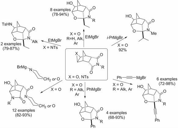Grignard Reagents and Their N-analogues in the Synthesis of Tricyclic and Tetracyclic Cage-like Lactams