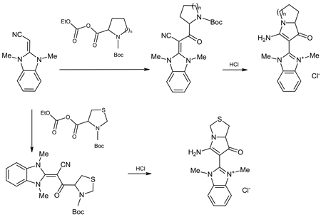 Synthesis of Masked Vicinal Amino Aldehydes of Pyrrolizine and Pyrrolo [1,2-c]thiazole Series