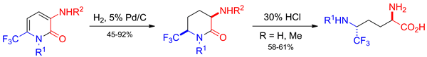 Catalytic Hydrogenation of 3-Amino-6-(trifluoromethyl)-5,6-dihydropyridin-2(1H)-ones and Its Use in the Synthesis of Trifluoromethyl-Containing Mimetics of Ornithine and Thalidomide