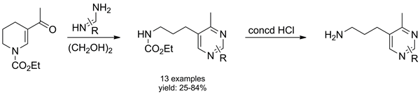 Reaction of Ethyl 5-Acetyl-3,4-dihydropyridine-1(2H)-carboxylate with 1,3-N,N-Bis-nucleophiles: A Facile Access to Novel Pyrimidine Derivatives