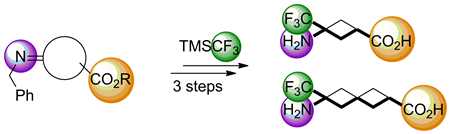 Exploiting the Addition of Trimethyl(trifluoromethyl)silane to Functionalized N-Benzylimines for the Preparation of Two Novel x-Trifluoromethyl x-Amino Acids