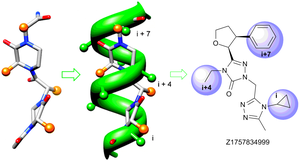 Design of potent α-helix mimetics using three-residue approach
